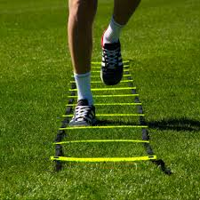 The Art of Agility Training